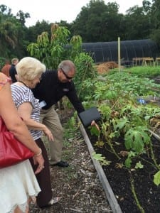 Steve King, Executive Director, visits the Meals On Wheels of Tampa community garden at the Sustainable Living Project near Lowry Park.